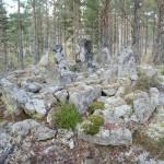 Gränsröse  i Håbo-Tibble