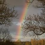 Regnbåge över Håbo-Tibble